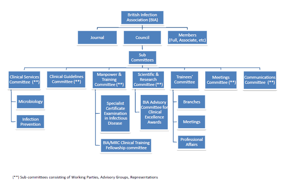 bia-organisation-structure.png